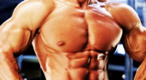 muscle_entrenamiento