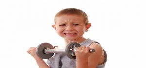 construye_la_mayor_cantidad_de_musculo