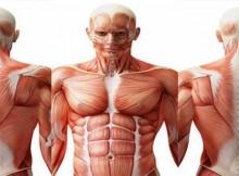 4-remedios-naturales-para-el-dolor-muscular