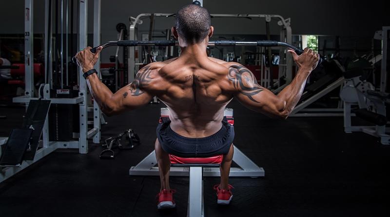 Dale Salud a Tus Músculos de la Espalda