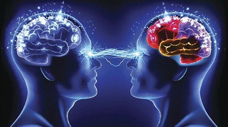 ¿Cómo Funciona la Mente Humana?